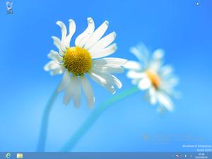 Win8desktop_2